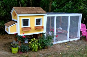 Chicken Coop Stationary Design