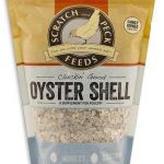 Oyster Shell Bag