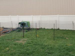 Omlet Fence