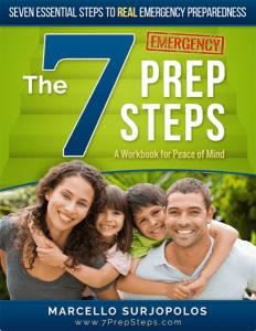 7 Prep Steps Book