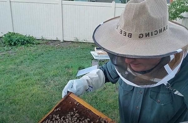 honey bee protective clothing